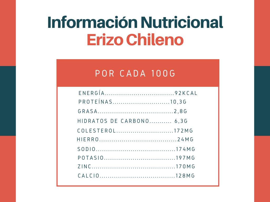 Información nutricional erizo chileno